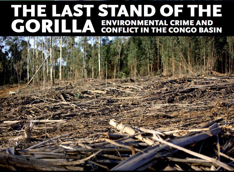 http://www.grida.no/files/publications/gorilla/rollup1_GorillaStand.pdf
