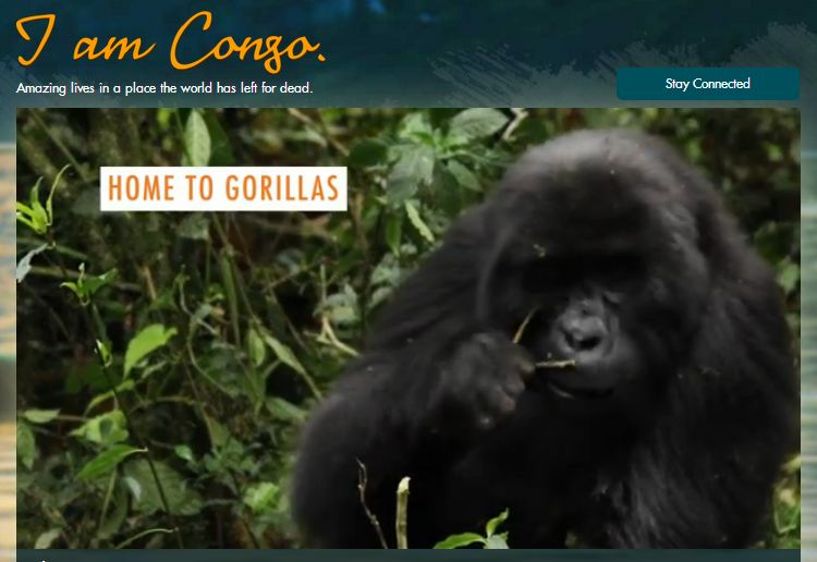 http://www.raisehopeforcongo.org/apps/iamcongo/#conservationist