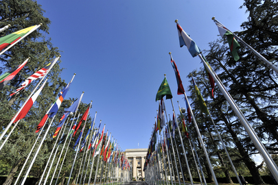 http://www.unmultimedia.org/photo/detail.jsp?id=485/485261&key=476&query=human%20rights%20business&lang=en&sf=
