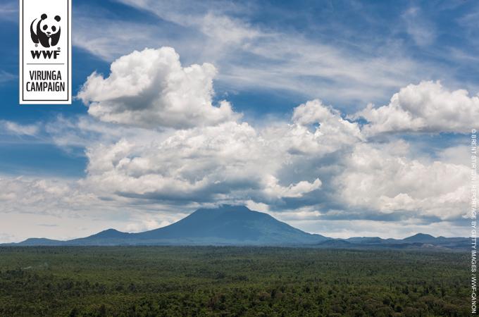 WWF-Ecard Virunga Campaign