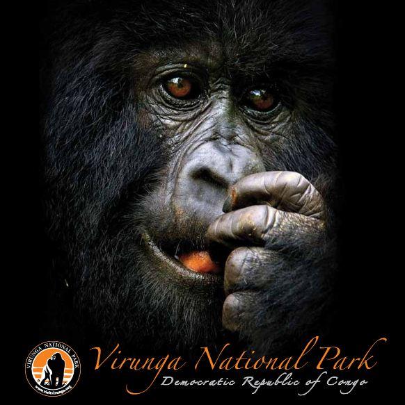 virunga-tourism-brochure-june-2011.pdf
