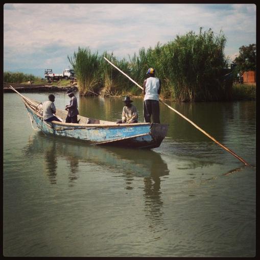 (c) Save Virunga