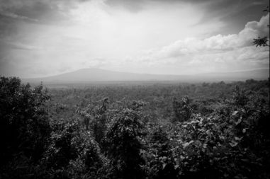 http://www.globalpost.com/series/chaos-in-congo-m23-rebels-oil-soco-virunga-national-park-north-kivu