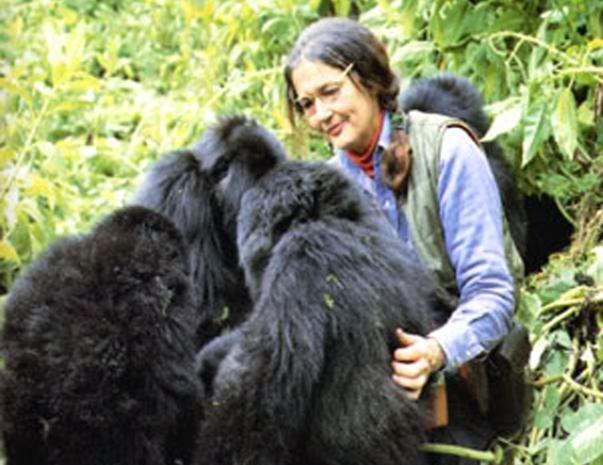 Dian-Fossey (1)