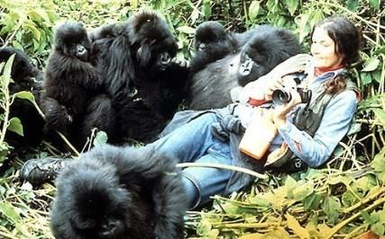 Dian-Fossey
