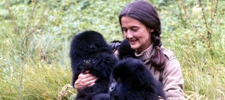 Dian-Fossey5