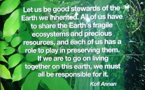 673611577-let-us-be-good-stewards-of-the-earth-we-inherited-environment-quote-2