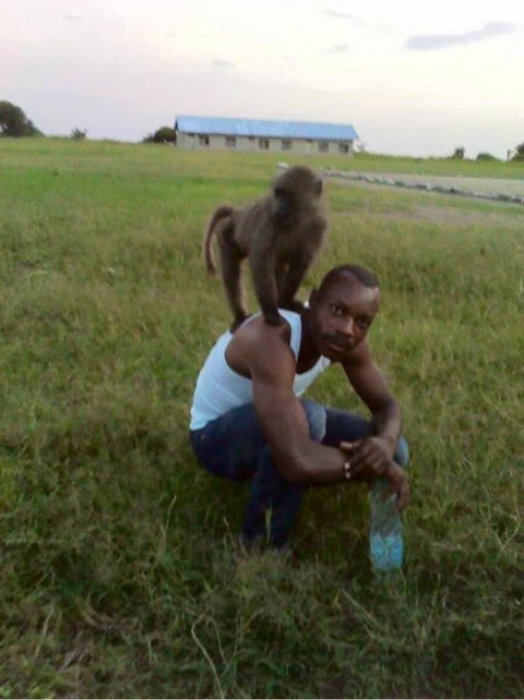 With a baboon he befriended near his ranger post