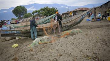 Cette photo a été prise au bord du lac Edouard sur le plage à KIAVINYONGE, en territoire de Beni, province du Nord Kivu. Photo prise par Paul Careca lors d'une mission de sensibilisation sur la loi portant règlementation de la pêche dans les trois pêcheries du lac Edouard et d'observatoire transfrontalier pour la bonne gouvernance des ressources naturelles; accompagné de Daniel machozi, en décembre 2013. Cette photo montre l'image de deux pêcheurs qui sont en train d'effilocher ou arranger leurs filets avec les matériels de pêche avant de se rediriger encore à la pêche (KUSIKA en langue locale) ; et Les arbres sur la photo sont plantés le long du lac, au Beach, plage communément appelé KAINGINI en langue locale, servent comme des parasoleils où abritent les pêcheurs et autres personnes se retrouvant au bord du lac lors d'un soleil ardent. Photo: Paul Careca.