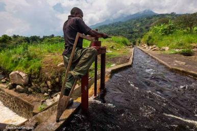 Virunga.org