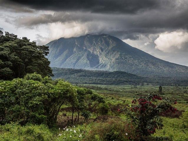 Virunga-copyright-Scott-Ramsay-www.LoveWildAfrica.com-10