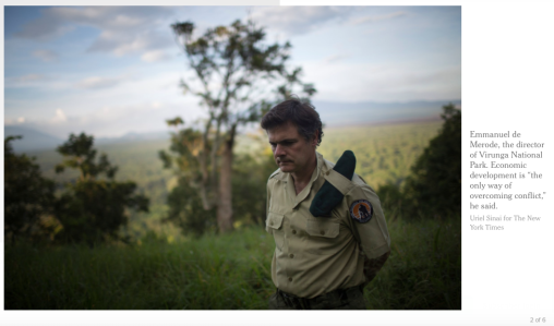 (C) NYTimes -https://www.nytimes.com/2017/08/30/business/congo-power-plants-poaching.html