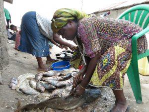 Ces deux mamans sont des épouses des pêcheurs au niveau de la pêcherie de Nyakakoma. Ici elles s'occpent de la préparation des poissons. Parmis ces poissons certains sont destinés pour être salés et d'autres pour être fumés.