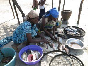 Ces deux mamanas sont des épouses des pêcheurs au niveau de la pêcherie de Nyakakoma. Ici elles s'occpent de la préparation des poissons. Parmis ces poissons certains sont destinés pour être salés et d'autres pour être fumés.