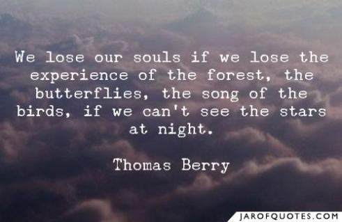 813221-we-lose-our-souls-if-we-lose-experience-forest-butterflies-song-birds-if-we-cant-see-stars-at-night-thomas-berry