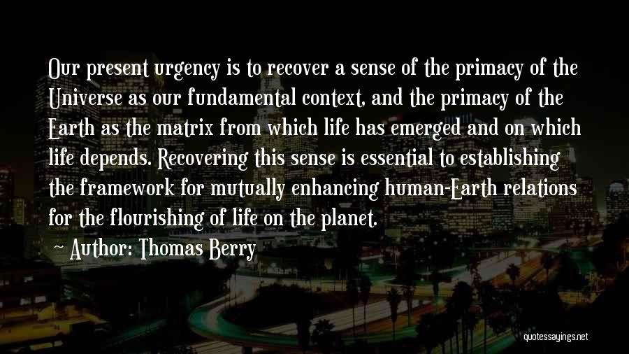 thomas-berry-quote-1708599