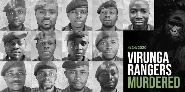 act-virunga-rangers-murdered
